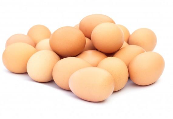 Изображение Яйцо